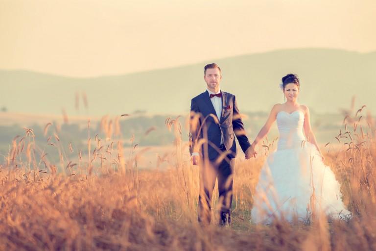 Para młoda w polu zboża, waniliowe kolory